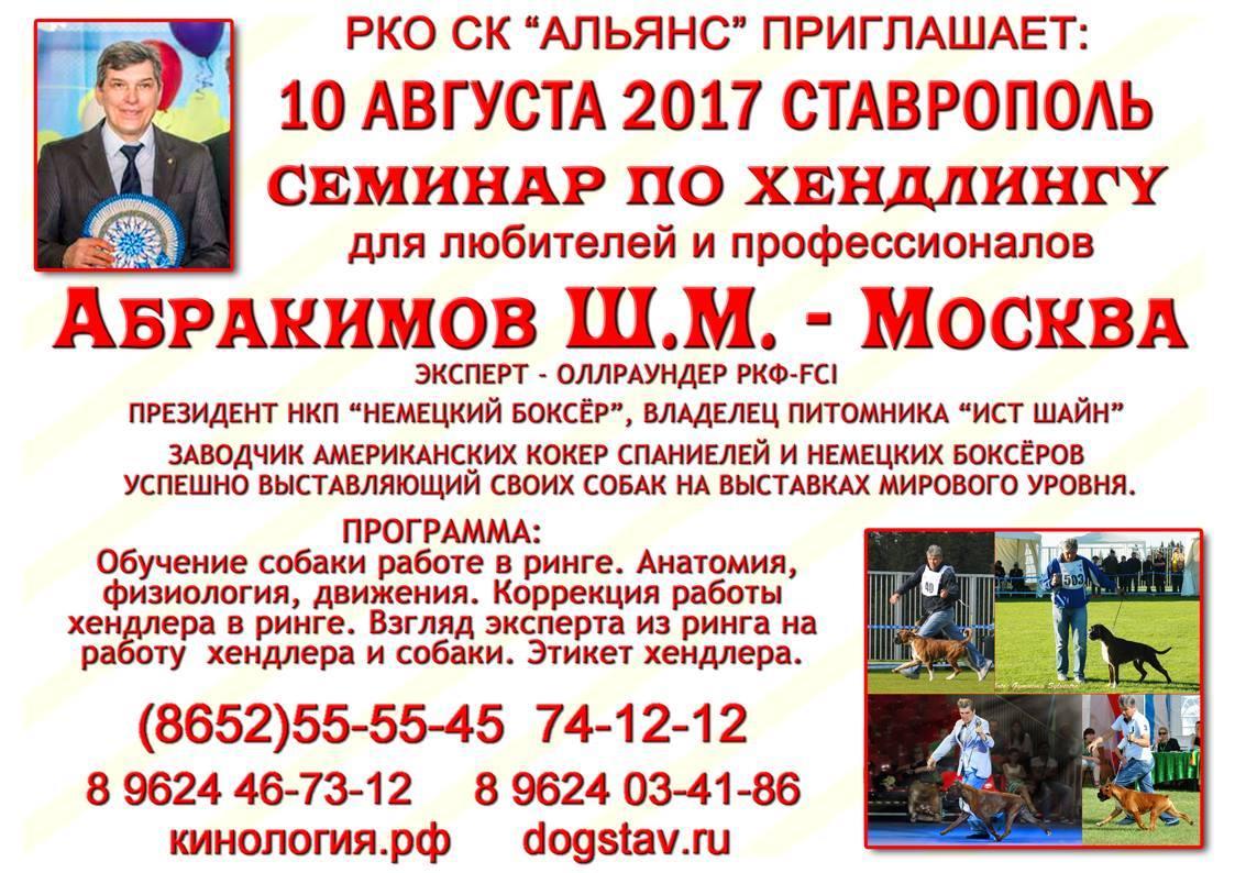 дрессировка по хендлингу Ставрополь