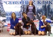 младший ЮХ, юниоры, щенки,  питомники,  гордость России, ветераны._3