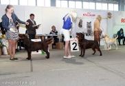 Участники выставки_3