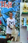 Выставка САС в Ставрополе_4