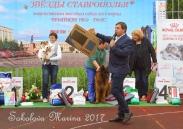 Выставка Ч РКФ 14 мая 2017
