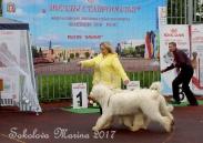 Конкурс ЛУЧШАЯ ПАРА_1