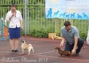 БЕСТ ЮНИОРОВ _1