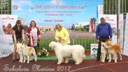 Конкурс ЛУЧШАЯ ПАРА_5