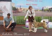 БЕСТ ЮНИОРОВ _6