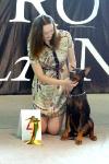 Выставка собак в Ставрополе_9