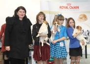 Выставка в Ставрополе_1